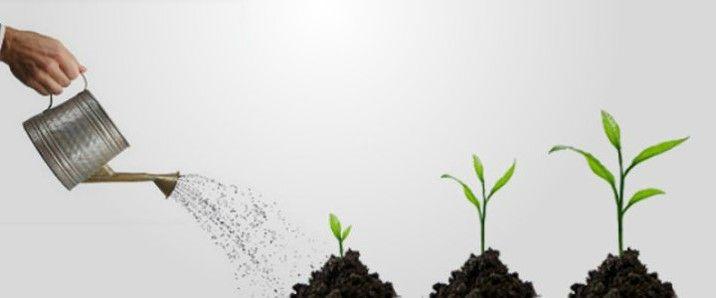 Planificar el crecimiento: Cuándo parar la pelota